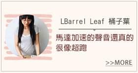 Vitamix超跑級調理機_部落客體驗分享_LBarrel_Leaf桶子葉